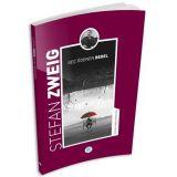 Geç Ödenen Bedel - Stefan Zweig - Maviçatı Yayınları