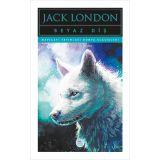 Beyaz Diş - Jack London - Maviçatı (Dünya Klasikleri)